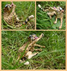 Figure of a cheetah.