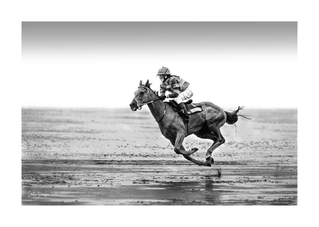 The Flying Horse by SteDreLa