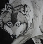 Wolf Quail quill ink