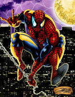 SPIDERMAN Color by VAXION
