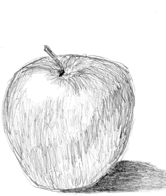 Apple Pencil Sketch By Unpr0gr4mm3d On Deviantart