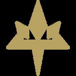 Pokemon Aether Foundation Logo