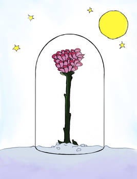 The Little Prince's Rose