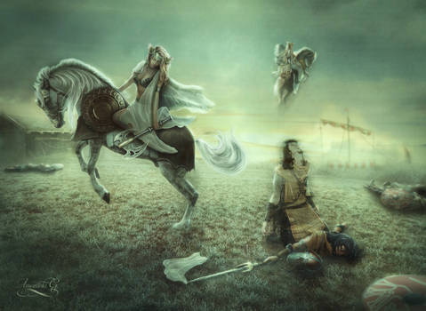 The harvest of the Valkyries