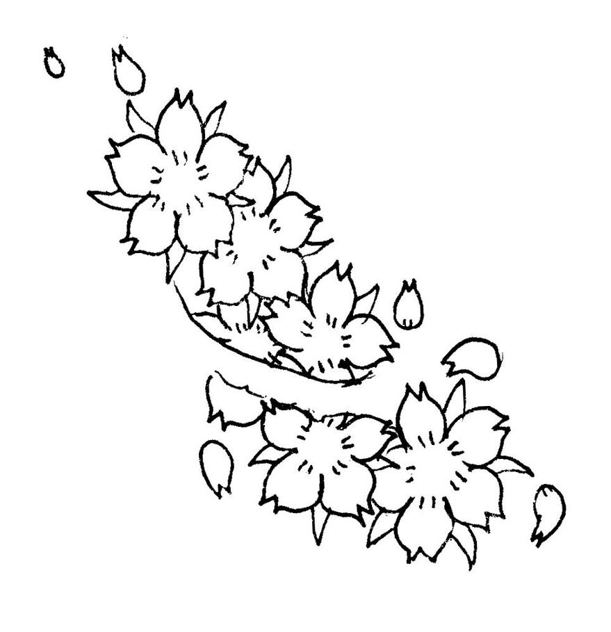 Blossom Flower Line Drawing : Cherry blossoms by letitlive on deviantart