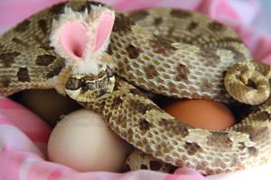 Easter Hog!