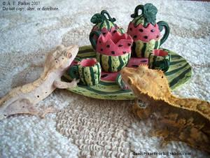 Gecko Tea Party