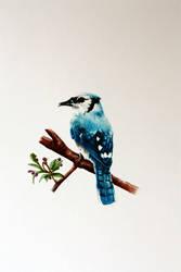 Acrylic paint blue bird