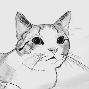 prinsepolo's Profile Picture