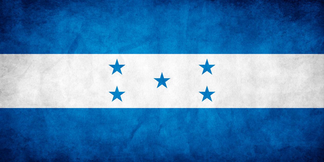 Honduras Grunge Flag by think0