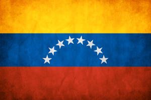 Venezuela Grunge Flag by think0