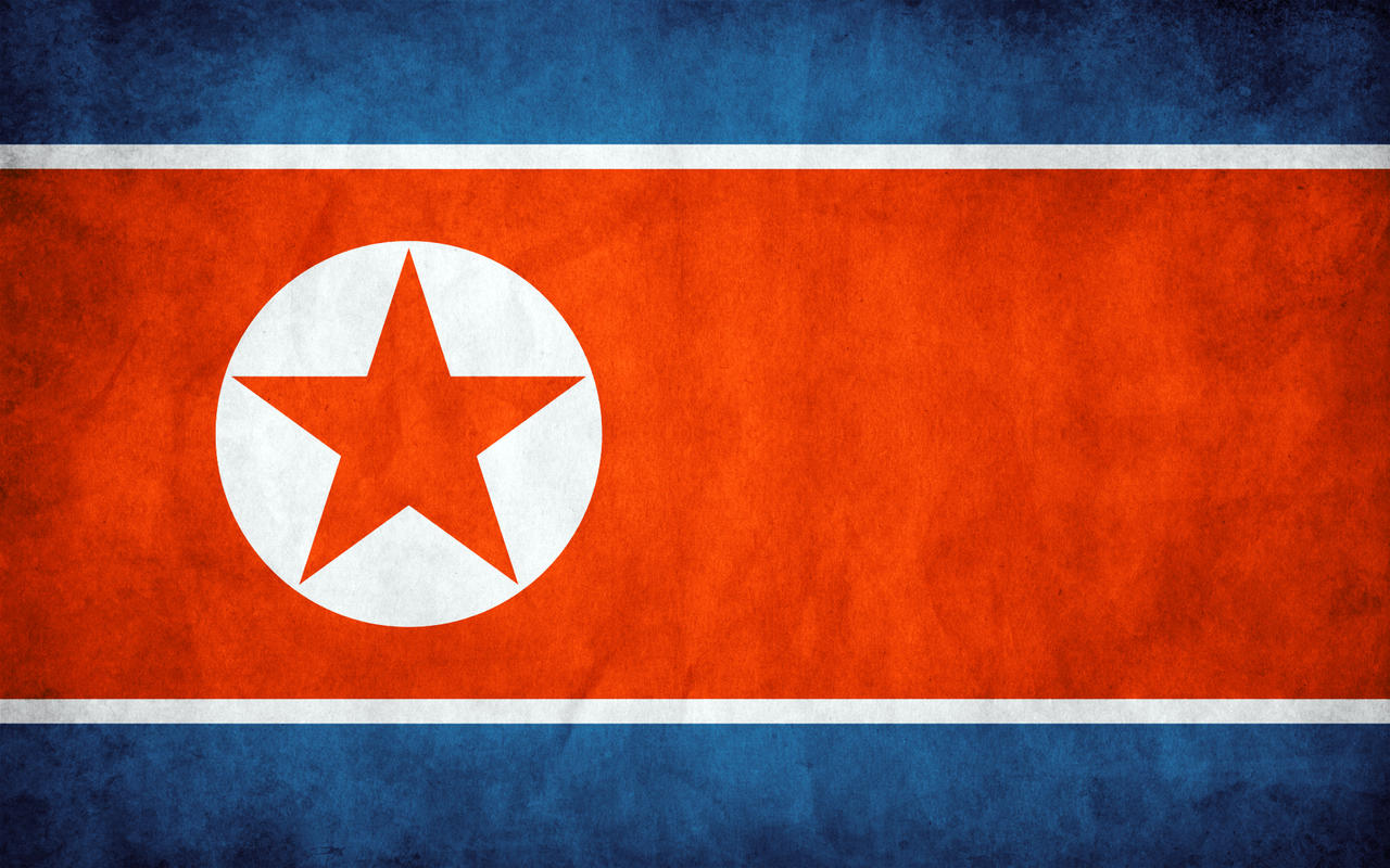 North Korea Grunge Flag by think0