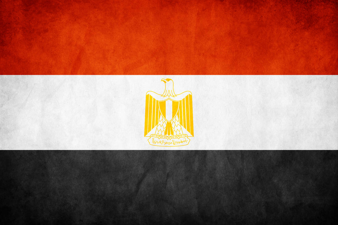 Egypt Grunge Flag by think0