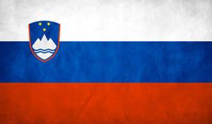 Slovenia Flag Grunge