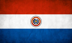 Paraguay Grunge Flag