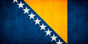 Bosnia and Herzegovina Flag G