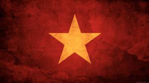 Vietnam Flag by think0