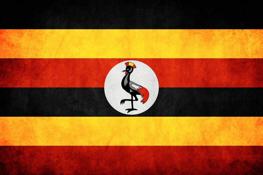 Uganda Grunge Flag by think0