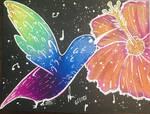 Rainbow Hummingbird and Hibiscus