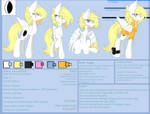 Solar Eclipse Reference sheet