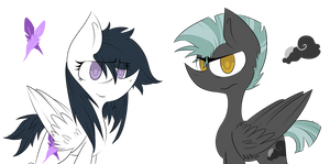 Pale Feather and Sky Shadow AKA Rumbles Parents