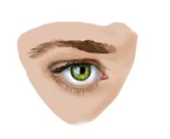 His Green eyes by lilyjamesship