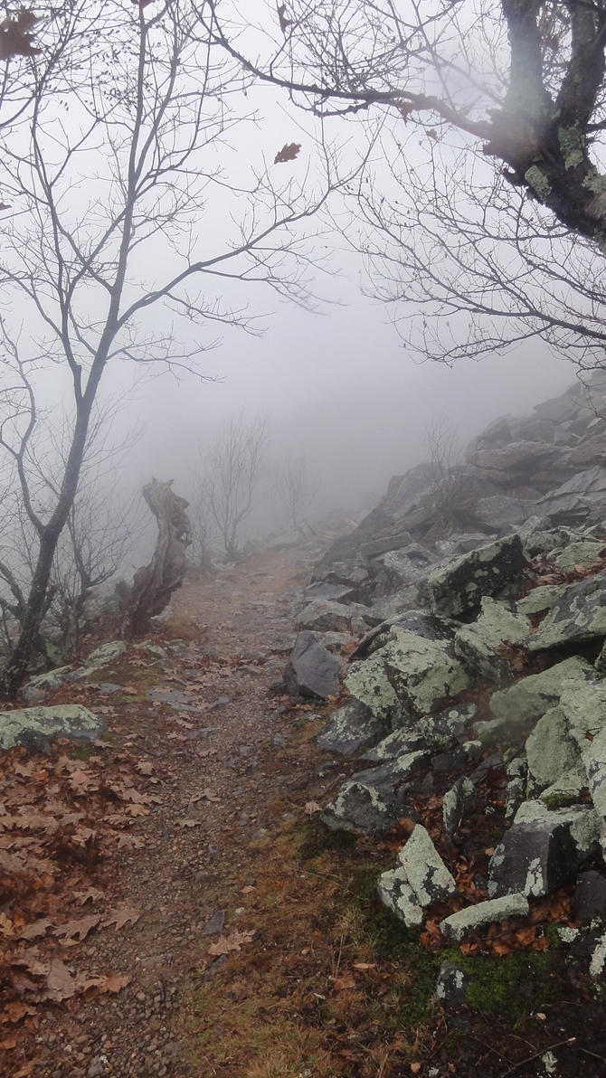 more pics of my mtn hike by MySocksRock