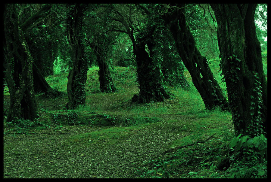 into the green... by tanares8