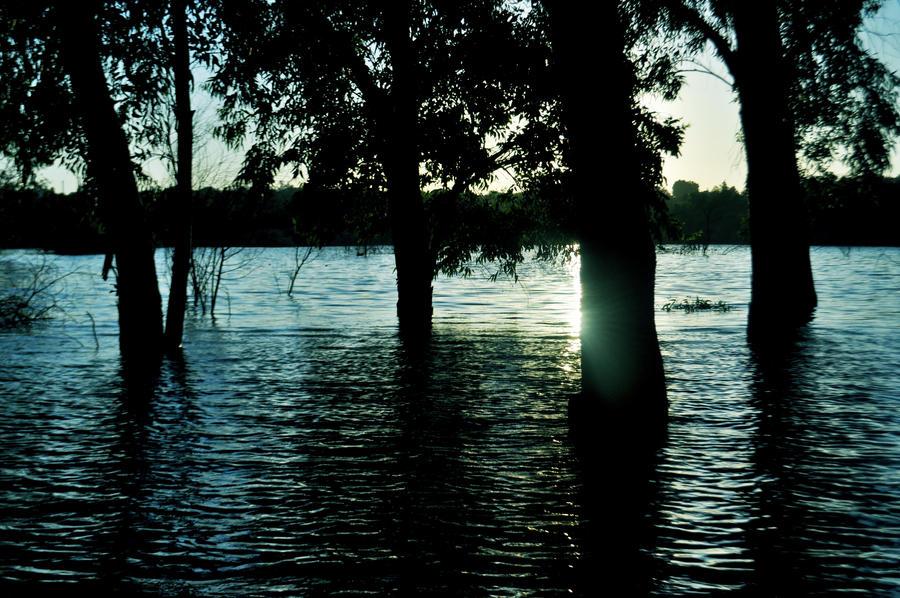 lake by tanares8