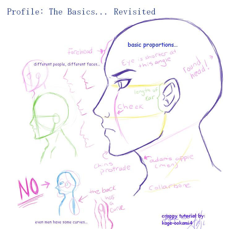 profile the basics revisited by kage ookami4 on deviantart