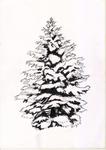 Sketch6-Christmas tree?