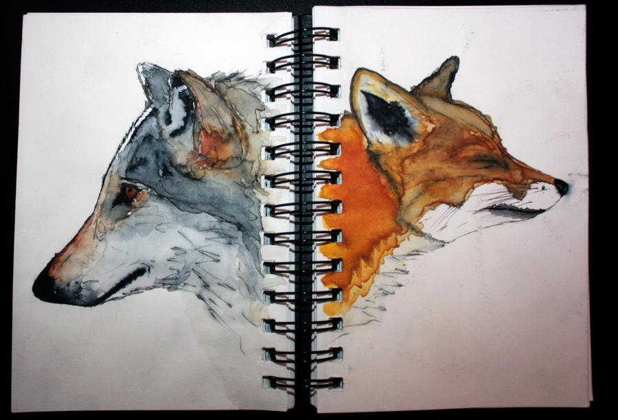 The wolf and Fox