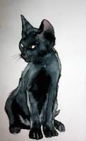 Mon ptit chat noir by vodoc
