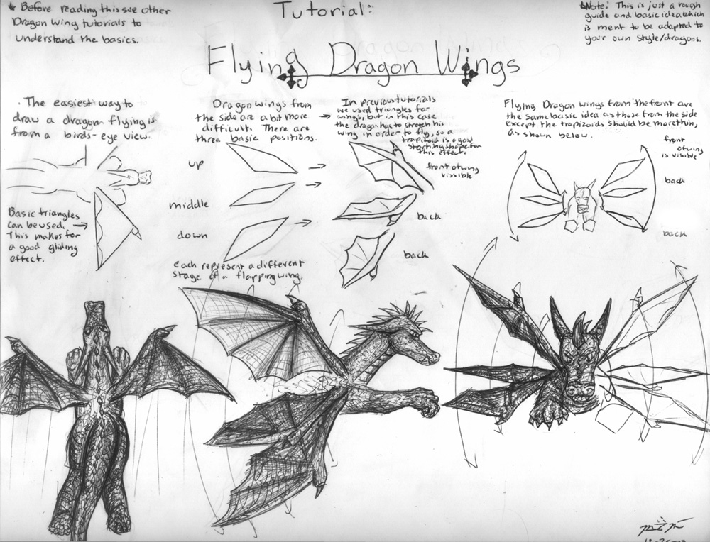 How to Draw Flying Dragon Wing by bladesfire on DeviantArt