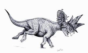 Pachyrhinosaurus charging