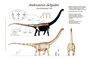 Andesaurus delgadoi by Paleo-King