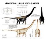 Andesaurus delgadoi - revised