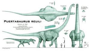 Puertasaurus reuili - REVISED