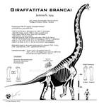 Giraffatitan brancai hi-fi skeletal