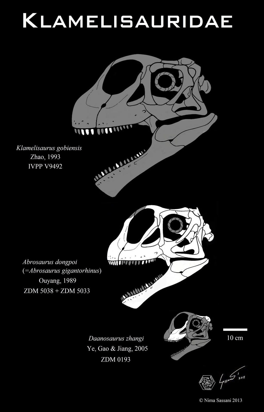Klamelisaurid skull comparison by Paleo-King