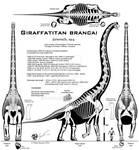 Giraffatitan brancai UNCENSORED!