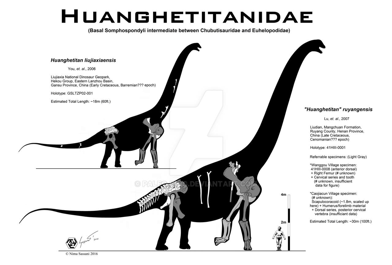So you want to draw Huanghetitanids?
