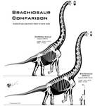Brachiosaur comparison