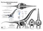 Futalognkosaurus dukei Mk. X (Calvo edition)