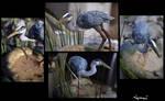 :.Great Heron.: by XPantherArtX