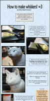 :.Sculpting tips - Whiskers.: