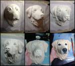 :.Molly portrait - WIPs.: