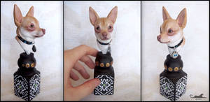 :.Chihuahua mini bust - Snow.: