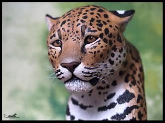 :.Spotted Jaguar.: by XPantherArtX