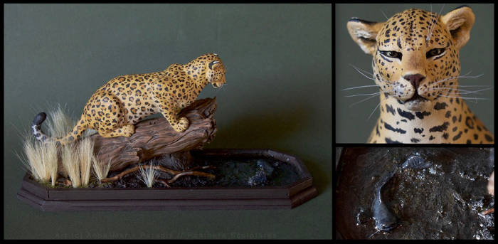 The leopard and the catfish